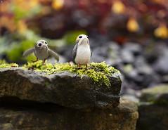 Porg Cliff Edge (Jezbags) Tags: porg cliff edge porgs bird birds toy toys hottoys sideshow toyphotography canon canon80d 80d 100mm macro macrophotography macrodreams starwars thelastjedi