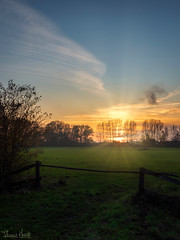 sundown (Thomas Heuck) Tags: greifswald sonnenuntergang sunset landschaft landscape wiese meadow sonne sun himmel sky bäume trees olympus penf
