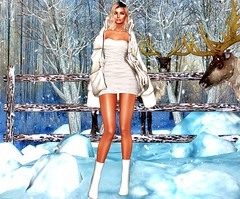 Cold Hearted (Niki Cole) Tags: sl secondlife nikicole preciousniki blog blogger fashion trends beauty ella unik event synnergy lelutka maitreya glamaffair velour doux coco mayas colivatibeauty