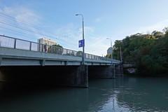 Pont de Saint-Georges @ Walk along the Arve river
