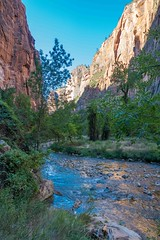 Zion National Park-06661 (gsegelken) Tags: gary lorrie patty riversidewalk springdale usa utah virginriver zionnationalpark