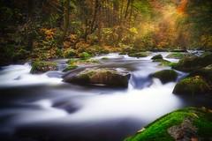 Herbst an der Bode (gunter701) Tags: herbst langzeitbelichtung harz