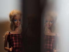 tripple effect (Elisabeth patchwork) Tags: prism prisming prisma barbie tripple reflection 7artisans