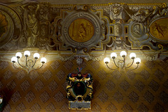 X_P1420331 (Menny Borovski) Tags: anatomicaltheater architecturalmodel bo palace universityofpadua padua mural universitàdipadova palazzodelbo italy