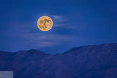 Moonrise Over Mesquite (Wycpl) Tags: