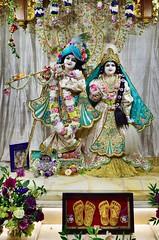 Sri Sri Radha Londonisvara (Jason Khoo Photography) Tags: nikkor nikonglobal decorations colour amateurphotography hinduism culture flickr deity iskcon harekrishna harekrsna radhalondonisvara radhakrishna temple spirituality