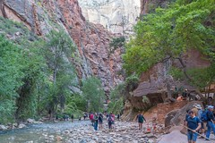 Zion National Park-06680 (gsegelken) Tags: gary lorrie patty riversidewalk springdale usa utah virginriver zionnationalpark