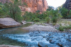 Zion National Park-06669 (gsegelken) Tags: gary lorrie patty riversidewalk springdale usa utah virginriver zionnationalpark