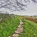 Hadrians Wall, MC 34, Grindon Mile Castle (2)
