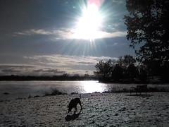 Chilly Morning! (EX22218 - ON/OFF) Tags: park longrun hydrocephalus veteransday caffeine sugar salt fluids brain letsguide stress suicideprevention recycling