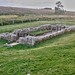 Hadrians Wall, MC 31, Mithras Temple, Brocolitia (14)