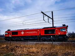 Crossrail/Xrail DE6310 met containertrein @ Ekeren (Avinash Chotkan) Tags: trains belgium ekeren dieselpower class66 de6310 xrail crossrail