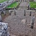 Hadrians Wall, MC 31, Mithras Temple, Brocolitia (6)
