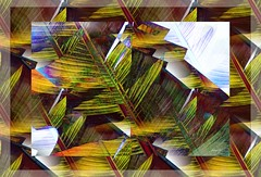 Hard Edges (Marcia Portess-Thanks for a million+ views.) Tags: lines sharpedges green overlaying multiples palmleaf palm leaf photoart photomanipulation elartedigital digitalart elarte art abstractart abstracto abstract marciaaportess marciaportess map hardedges