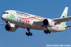 LAX (zfwaviation) Tags: klax lax los angeles airport airplane airline airliner aviation 787