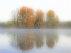 Autumn fog (Bob Silver ☺) Tags: autumn fog scene lake