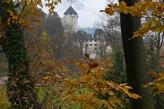 Schloss Matzen (Ernst_P.) Tags: aut brixlegg österreich schlossmatzen tirol herbst laub wald laubwald schloss matzen sigma art 24105mm f40 autumn fall otoño
