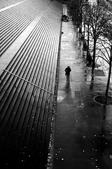 On the long sidewalk (pascalcolin1) Tags: paris13 homme man pluie rain reflets reflection lumière light marches steps escalier stairs arbres trees trottoir sidewalk photoderue streetview urbanarte noiretblanc blackandwhite photopascalcolin 50mm canon50mm canon