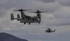 Osprey and Venom in the Frame (dcnelson1898) Tags: 2019mcasmiramarairshow marinecorpsairstationmiramar unitedstatesmarinecorps marines military flight airshow airplanes sandiego california magtf marineairgroundtaskforce vstol bellboeingmv22osprey tiltrotor vmm166seaelks