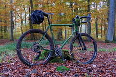 Soma Wolverine - First Ride (hans.hirsch) Tags: monstercross wolverine 40 type b with cinq touring fork soma maxxis shimano sram aspen xx grx dt swiss xr 361 bike gravel cycle bycicle bici biciclette velo wald forest bosco