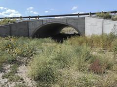 Region 5 - US 550 COLONA UNDERPASS (coloradodotphoto) Tags: region5 cdot colorado dot wildlife crossing underpass fencing safety hazard protect