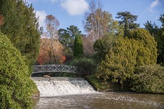 Autumn Colours at Sheffield Park. (philsheer) Tags: sheffieldpark nationaltrust
