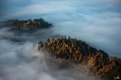 Iles flottantes (Manonlemagnion) Tags: nature paysage alsacevosges mer brume matin sapin lumère sunrise leverdusoleil nikond810 70200mm