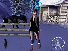 Artic Winter (The Belle Mode) Tags: secondlife supernatural wellmade tootyfruity emassecret