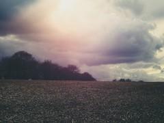 Flare and Clouds | 17. März 2019 | Tarbek - Schleswig-Holstein - Germany (torstenbehrens) Tags: flare clouds | 17 märz 2019 tarbek schleswigholstein germany m42 porst color 117 f50mm mit faktor 0726 via ef mft adapter olympus penf 36mm f12