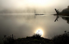 Early Morning (Diane Marshman) Tags: fog pond mist tree line reflection sun dawn morning early reflecting fall autumn pa pennsylvania state nature water reflections