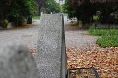 Giardini di Piazza Galimberti @ Lingotto @ Turin (*_*) Tags: sony rx100vii m7 matin morning october torino piemonte piemont piedmont turin italie italia italy europe 2019 autumn automne fall city cloudy park