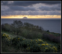 316/365 Sunset over Ailsa Craig. (B Ryder) Tags: sony a6300 1650mm lens ailsa craig south ayrshire scotland uk river clyde landscape clouds sky water sea gorse sunset
