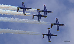 Fouga CM170 Magister ~ Patrouille Tranchant (Aero.passion DBC-1) Tags: 2019 meeting fertéalais dbc1 david biscove aeropassion avion aircraft aviation plane airshow fouga cm170 magister ~ patrouille tranchant