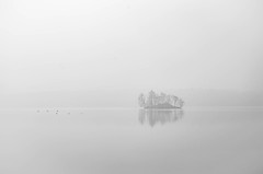 November (cнαт-ɴoιr^^) Tags: november nature outside nebel imgp3789 mist see insel möwen sea seagulls island geburtstag meister firlie pentaxawards pentaxflickraward pentaxart