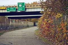 496 Fall Fence (matthewkaz) Tags: fall autumn colors fallcolors fence expressway freeway 496 sign roadsign roadsigns 127 north clare flint signs leaves rivertrail lansingrivertrail lansing michigan inghamcounty 2019 overpass vine vines path trail