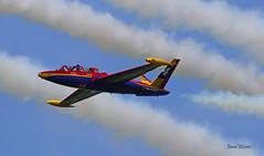 Fouga CM170 Magister n° 455  ~ F-GSYD (Aero.passion DBC-1) Tags: 2019 meeting fertéalais dbc1 david biscove aeropassion avion aircraft aviation plane airshow fouga cm170 magister ~ patrouille tranchant fgsyd
