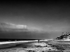 IMG_4899-Edit (Laurie2123) Tags: laurieabbotthartphotography laurieturner laurieturnerphotography laurie2123 blackandwhite monochrome monotone mono encinitas laurietakespics beach iphone11promax