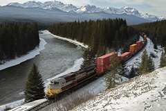 Heritage at Storm Mountain (Trevor Sokolan) Tags: heritage script tuscan grey tribute storm mountain mountains laggansub laggen alberta ab progressrail sd70acu rebuilt locomotive diesel intermodal freight curve water river rockies trees eldon railway railroad railfan rail railfanning trains train trainspotting tracks canadian canada cpr cp canadianpacific cprail