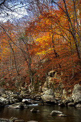 The Tye River in Central Virginia. (Joel Rollins Photography) Tags: license stock serene peaceful forest park rural nelson virginia fall landscape rocks autumn color noperson water river
