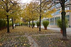 8 Gallery @ Lingotto @ Turin (*_*) Tags: sony rx100vii m7 city matin morning october torino piemonte piemont piedmont turin italie italia italy europe 2019 autumn automne fall cloudy