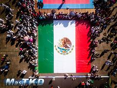 50 AÑOS TAEKWONDO EN MÉXICO 9 DE NOVIEMBRE 2019 (3 of 5)