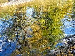 Autumn Abstract (Shannonsong) Tags: fall autumn river reflections abstract autumncolors fallcolors nature trees leaves rocks