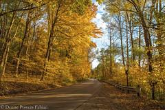 At the Reservoir (Singing Like Cicadas) Tags: 2019 autumn ohio october mogadorereservoir mogadore portagecounty outdoors nature color onethousandgifts trees