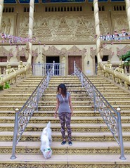 A visit to the Golden Temple with my friend Ayumi and her dog Optimus.  Phnom Penh. Cambodia  Oct 2019 #itravelanddance