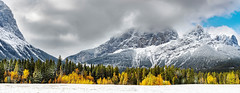 Fall vs Winter (Jeff Saly) Tags: snowstorm snow mountains landscape nature clouds rockies canada banff nationalpark