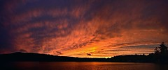 2019_1112Stunning-Sunset-Pano0001 (maineman152 (Lou)) Tags: panorama westpondpanorama westpondsunsetpanorama sunsetpanorama sunset sunseetcolor skycolor skyscene nature naturephoto naturephotography landscape landscapephoto landscapephotography novembersunset november maine