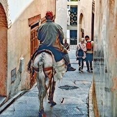 The Donkey Rider (paaddor) Tags: maroc marocco donkey city cityscape transport riding alley street