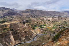 Farming terraces (marko.erman) Tags: peru colca canyon river deep condor cross cruz del backlight contrejour sony uwa travel outside outdoor nature mountains fertile terraces nopeople southamerica latinamerica ultrawideangle farming