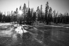 Island & Ice (JasonCameron) Tags: black white monochrome landscape uintah mountains utah frozen lake water pond sun trees pines