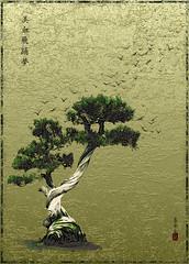 Bonsai (bethrosengard) Tags: bethrosengard photomanipulation digitallyenhanced photoart digitalmagic digitalart